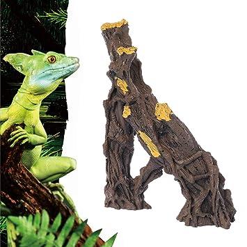 MYA - Corcho de Corcho con Agujero de árbol, Nido para Dodge ...