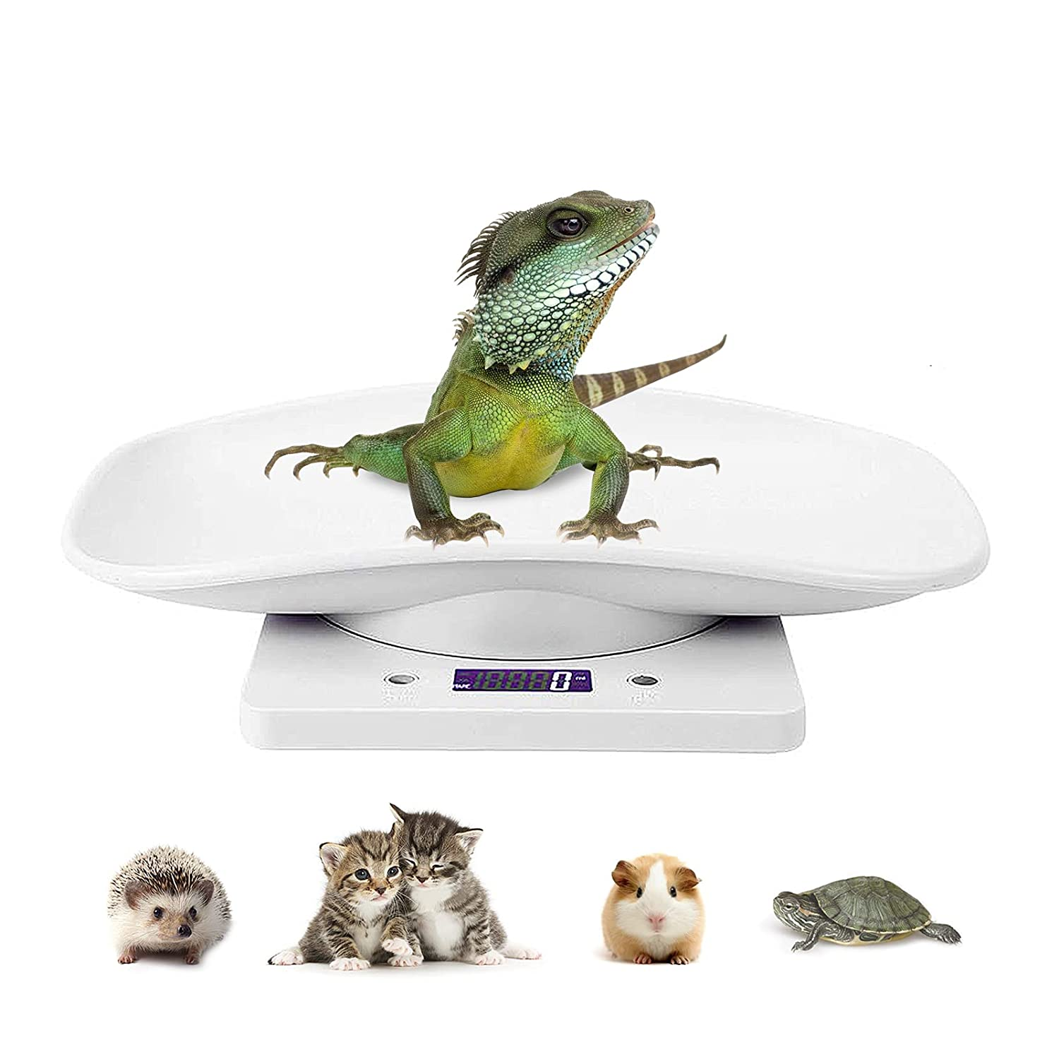 Digital Scale Pet LCD Electronic Weighing Scale, Kitchen Food Scale,Mini Precision Grams Weight Balance Scale with High Precision g/ml/oz/lb for Dog/Cat/ Hamster/Tortoise/ Lizard Small Animals