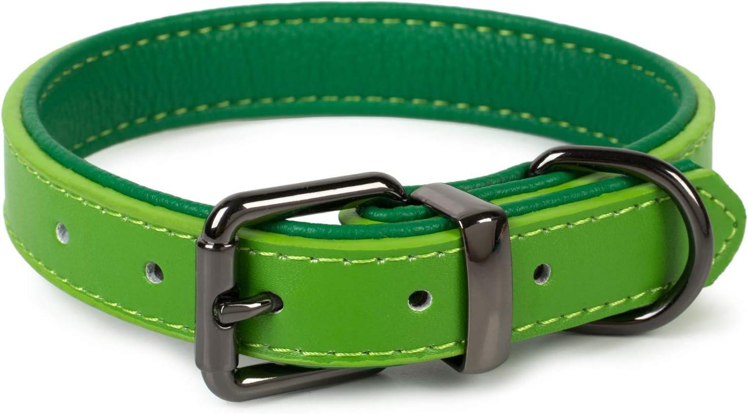 Puccybell Collar para Perros 2 Coloreado con Cuero, Collar clásico en Colores Contrastantes para Perros pequeños, medianos y Grandes HB004 (S, Verde)