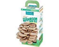 Back to the Roots Organic Mushroom Grow Kit