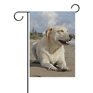 Hokkien Beach Beige Labrador Retriever Dog Garden Flag Banner 12 x 18 Inch Decorative Garden Flag for Outdoor Lawn and Garden Home Décor Double-Sided