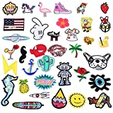 36 Pcs Random Assorted Iron-On Embroidered Motif Applique Glitter Sequin Decoration Patches 1-5 Inches Assorted Size DIY Sew on Patch Perfect for Jeans, Clothing