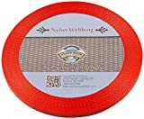 Country Brook Design | 3/8 Inch Neon Orange Heavy Nylon Webbing, 10 Yards