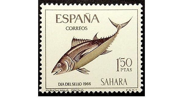 Passion Gift Stamp Art Mackerel Fish Dia Sel Sello 1966 España - Sello con Marco de Envío Arte 17236: Amazon.es: Hogar