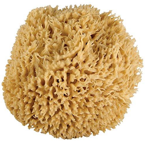 Just bath sponges the best Amazon price in SaveMoney.es