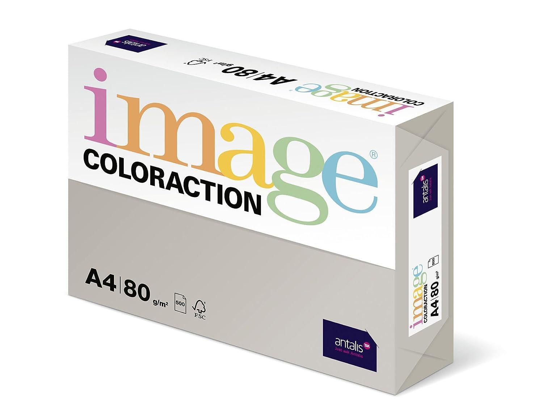 Antalis Coloraction - Risma di carta colorata, formato A4, 500 fogli, 80 g/m2, colore: Grigio chiaro (Iceland) 291270-ICEL/GRIS