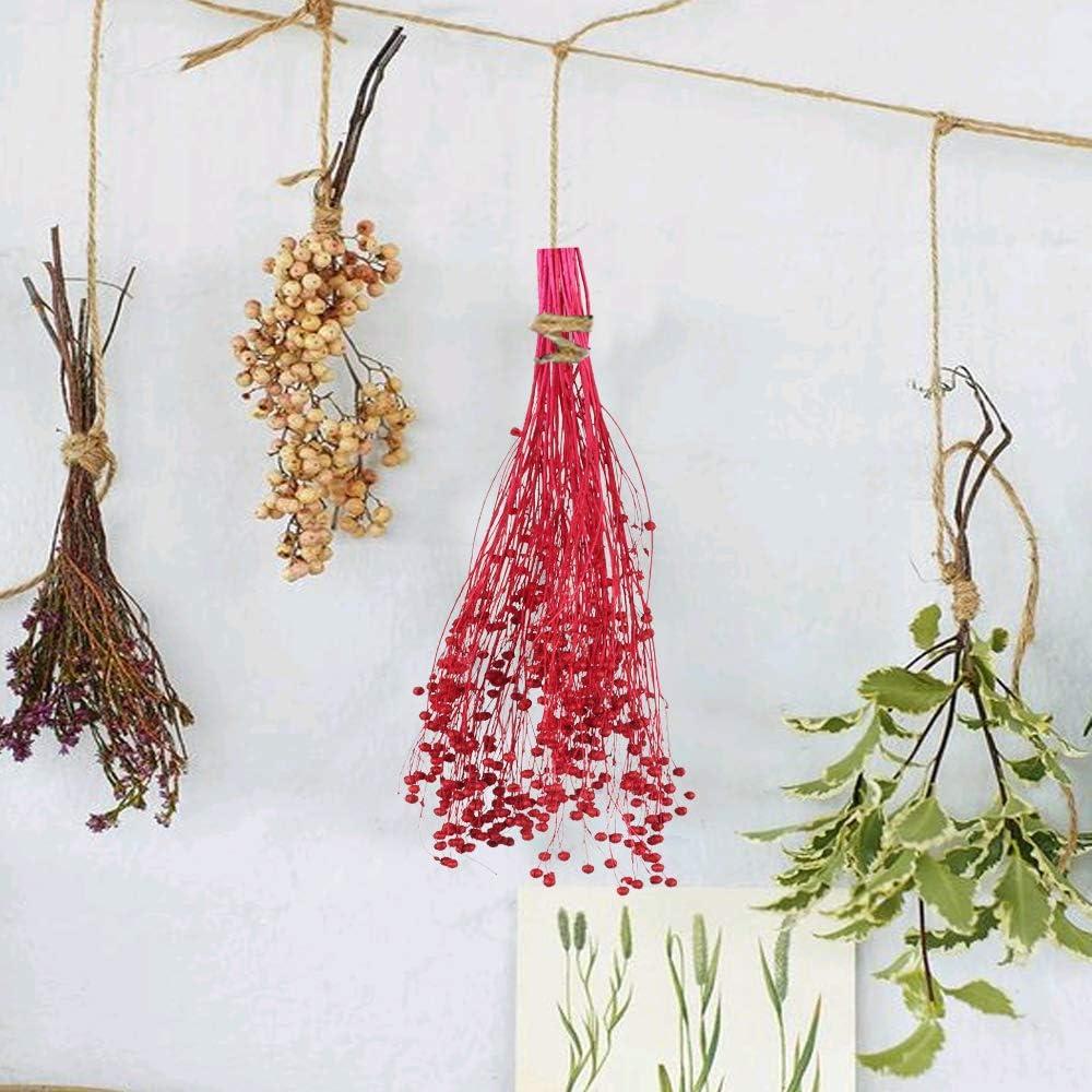 HUAESIN Ramo de Flores Secas Naturales Peque/ñas Ramillete Flor Seca Decoracion Roja Preservadas para Jarrones Maceta Manualidad Boda Fiesta Amor Hogar Mesa Balcon