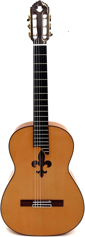 Guitarra TOLEDO TF-70 LIS flamenca: Amazon.es: Instrumentos musicales