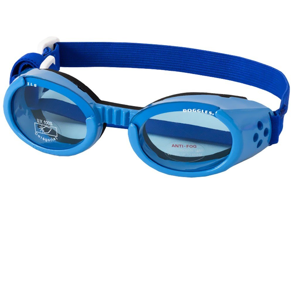 Doggles - Originalz Large Metallic Blue Frame / Blue Lens