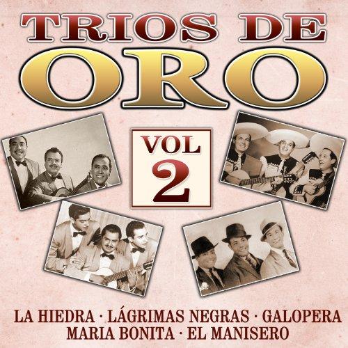 ... Trios de Oro, Vol. 2