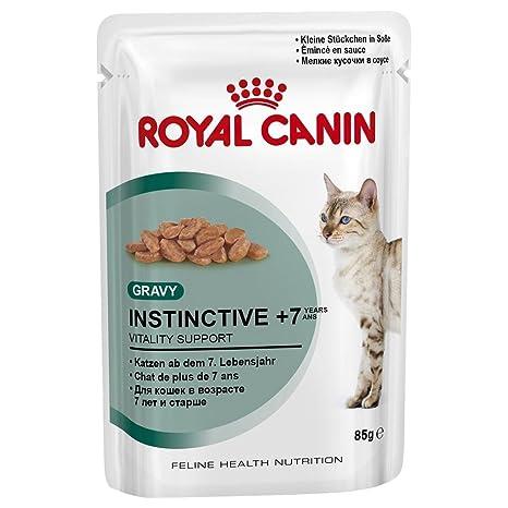 Royal canin - 85gr gato cuidado de bolas de pelo - comida mojado diet?