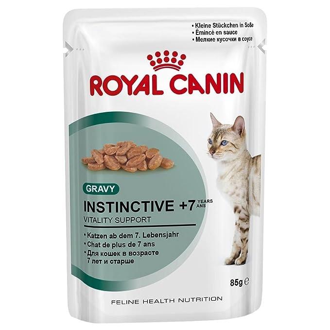 Royal canin - 85gr gato cuidado de bolas de pelo - comida mojado diet??tica gatos: Amazon.es: Productos para mascotas