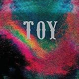 Toy [VINYL]