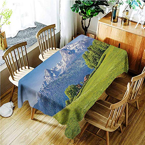 TT.HOME Water Resistant Table Cloth,Europe Blooming Flowers Snowcapped Mountain Tops in Background National Park Bavaria,Modern Minimalist,W60x120L,Green Sky -