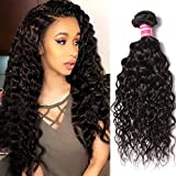 Nadula Brazilian Hair Water Wave 7A Grade 100% Unprocessed Virgin Human Hair 1 Bundle Deal Wavy Hair Extensions Natural Color (18inch)