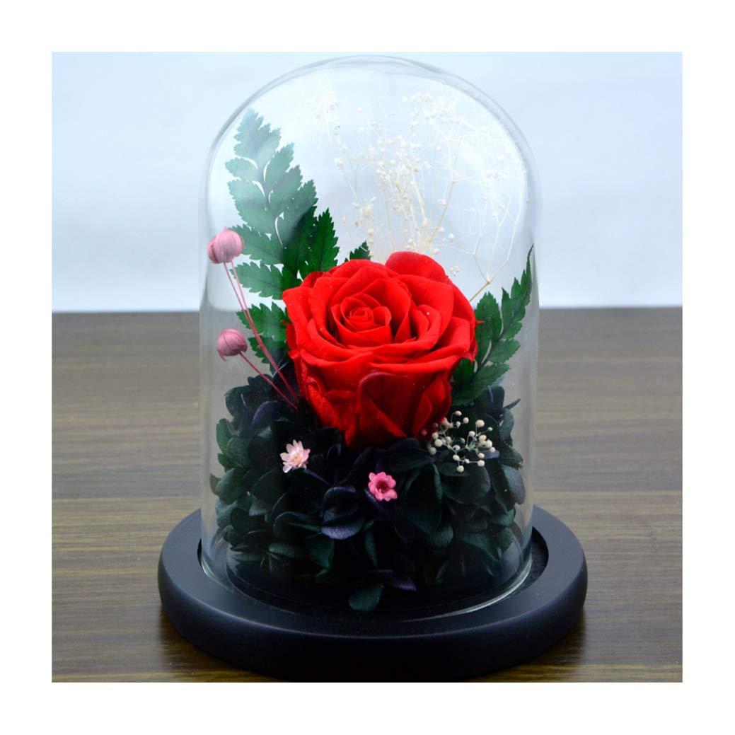 Anniversario Di Matrimonio Quante Rose.Dppan Rose Incantate Rosso Rosa Eterna Kit Di Rose Fiore