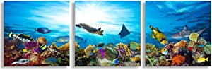 3 Piece Canvas Wall Art Ocean Bottom View Painting Tropical Coral Fish and Turtle Colourful Underwater World Picture Prints on Canvas,Modern Home Decor Stretched and Framed Artwork Ready to Hang