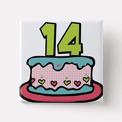 Zazzle 14 Year Old Birthday Cake Pinback Button Colossal 6quot