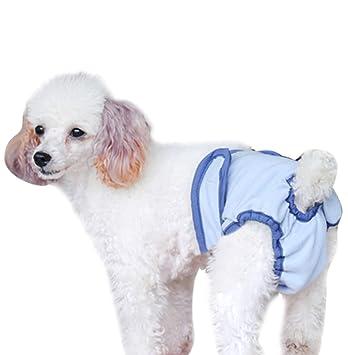 bao Core mascotas perro sanitaria pañales Higiene Unterhose Phys Iolo Estratégica unterwäche Negro/Azul M