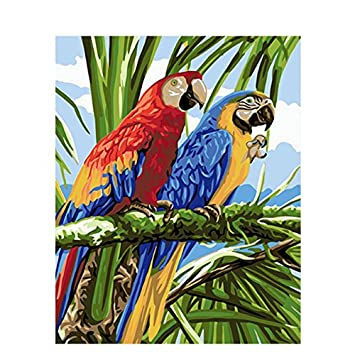 Tocare Painting By Numbers For Kids Adult Beginners Paint By Numbers Kits Parrot Home Decor Lobby Hobby 16x20inches