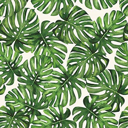 Papel de Parede Vinílico Folhagem Costela de Adão Bobinex Uau Verde