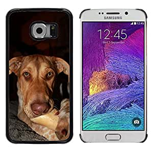 GoGoMobile Slim Protector Hard Shell Cover Case // M00118749 Dog Pup Canine Animal Bone // Samsung Galaxy S6 EDGE (Not Fits S6)