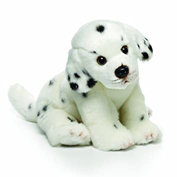 Amazon Com Nat And Jules Sitting Small Dalmatian Dog Children S