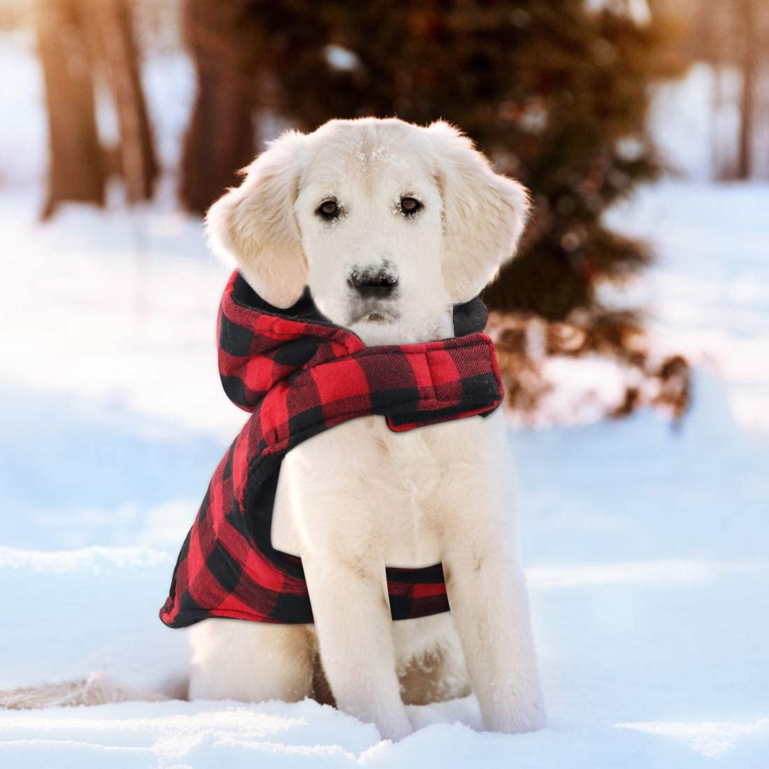Idepet Chemise /à capuche chien T-shirt v/êtements dhiver pour animaux de compagnie gilet costumes chauds manteau doux pour les chats petits moyens grands chiens
