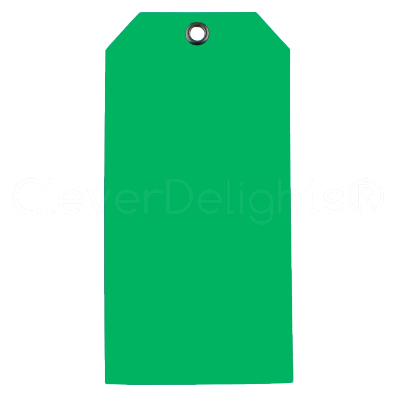 100 Pack - CleverDelights Green Plastic Tags - 4.75'' x 2.375'' - Tear-Proof and Waterproof - Inventory Asset Identification Price Tags