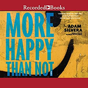 More Happy Than Not Audiobook