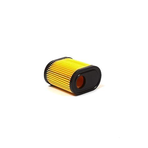 Oregon 69 - 331 Filtro de Aire con filtros de Aceite para ...