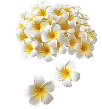 Amazon 12pcs white 236 flower hawaiian hawaii plumeria foam 12pcs white 236quot flower hawaiian hawaii plumeria foam hair clips for bridal wedding party beach mightylinksfo