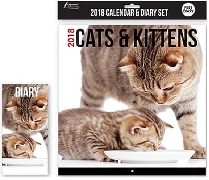 Calendario y agenda del 2018, diseño cuadrado con imágenes de gatos