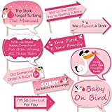 Big Dot of Happiness Funny Girl Special Delivery - Pink It's A Girl Stork Baby Shower Photo Booth Props Kit - 10 Piece