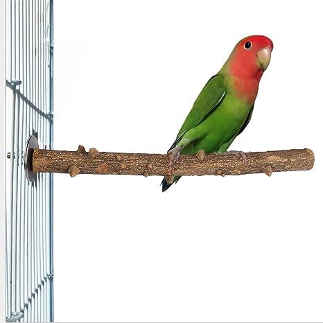 Soporte de Madera para pájaros y Loros Fresca Espinosa Madera ...