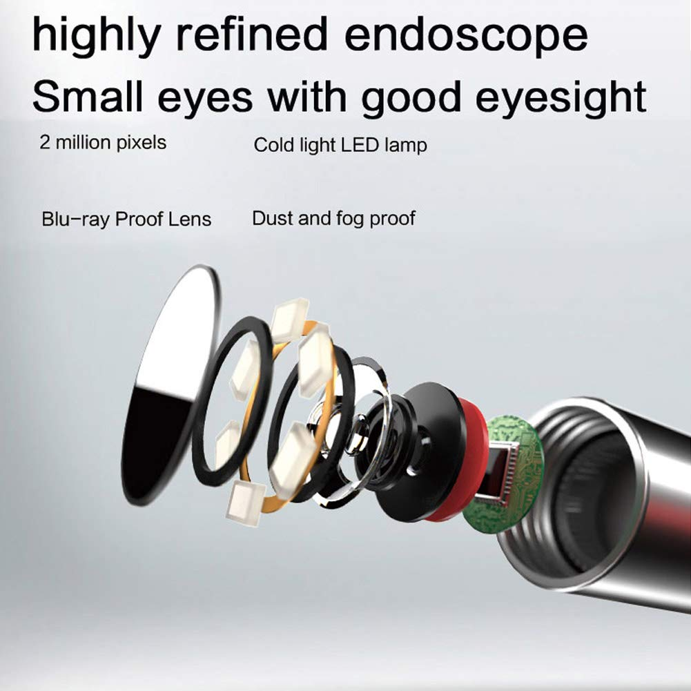 Ear Camera -1080P FHD Wireless Ear Scope Compatible iOS and Android for Adult,Children /& Veterinary Ear Otoscope Camera with 3-Axis Gyroscope Dual Systems Temperature Control WiFi Ear Endoscope