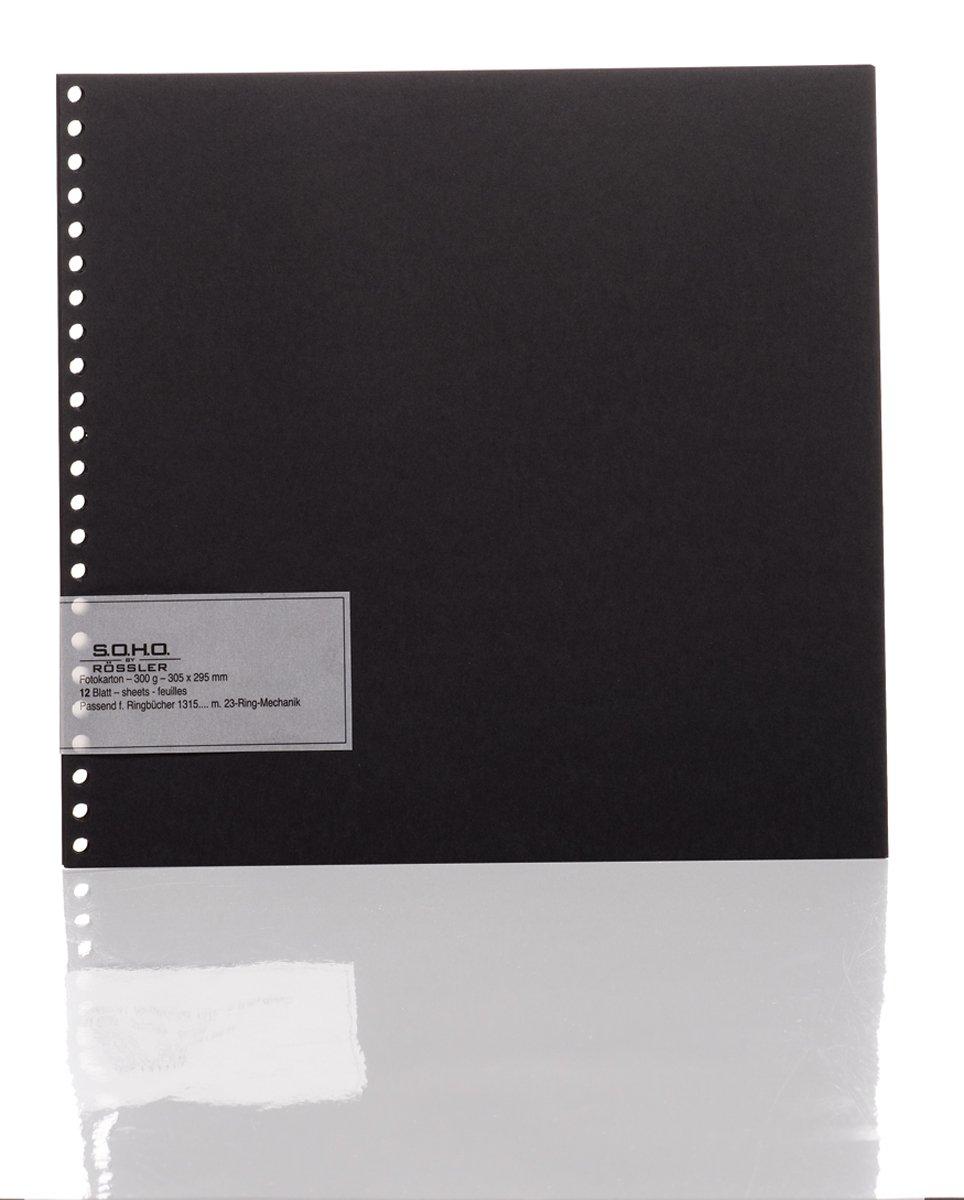 Rössler Papier 1320000070 Fotokarton (29,5 x 30,5 cm) Lochung für 23 ...