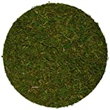 "SuperMoss (26295) Moss Soil Toppers, Fresh Green, 4"" (3 units)"