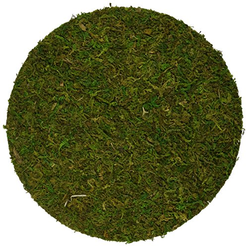Reindeer Topiary (SuperMoss (26300) Moss Soil Toppers, Fresh Green, 6