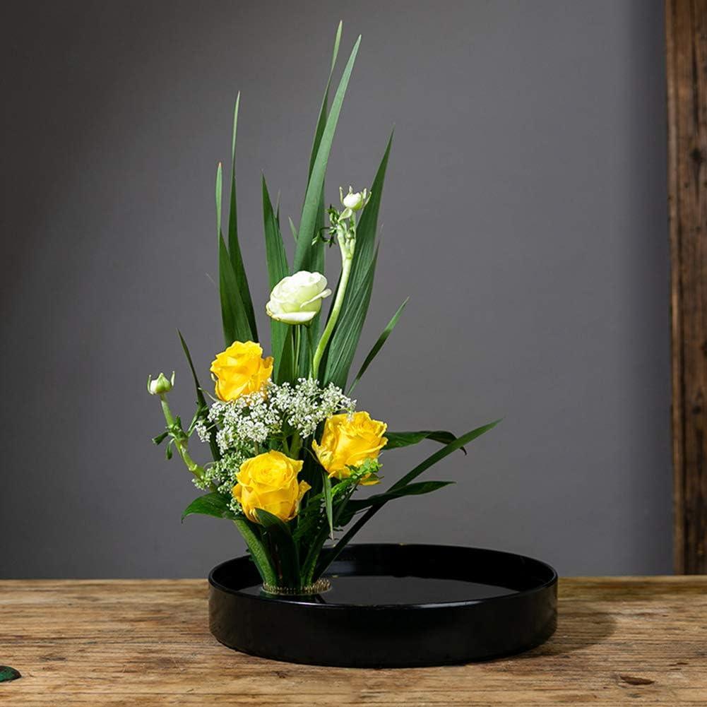 Hochwertigem Blume Frosch rund Halterung f/ür Arrangements Gr/ö/ße 6 x 6 cm Blumensteckiggel 8 x 11 x 2,5 cm