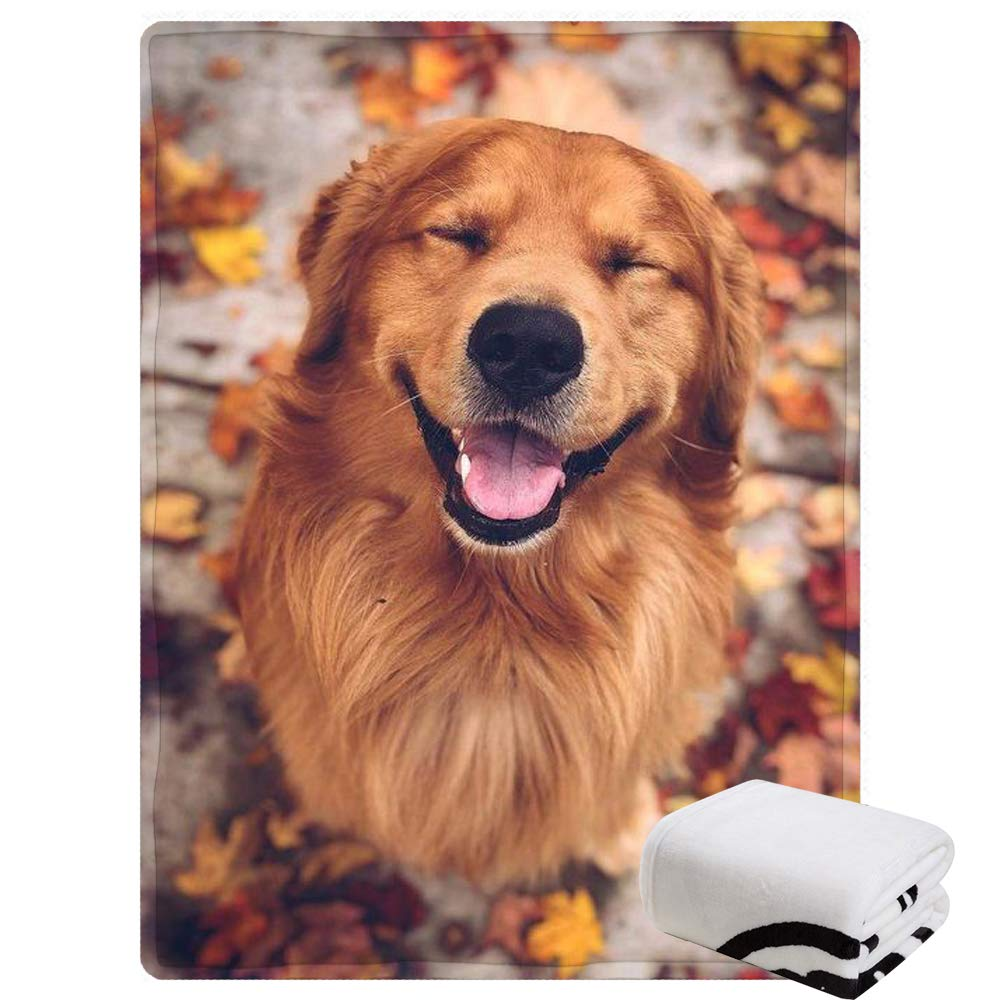 """Morebee Golden Retrievers Fleece Throw Blanket Personalized Soft Lightweight Blanket for Bed Couch Sofa Travelling Camping(45""""x 80"""")"""