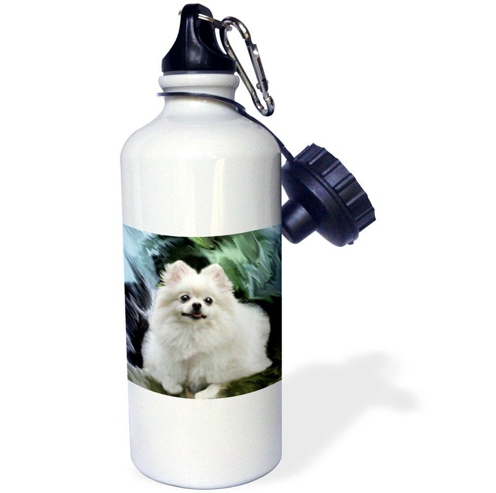 3dRose wb/_4167/_1Pomeranian Sports Water Bottle 21 oz White