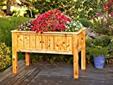 raised planter box plans A Woodworking Plan with Instructions to Build a Raised Planter