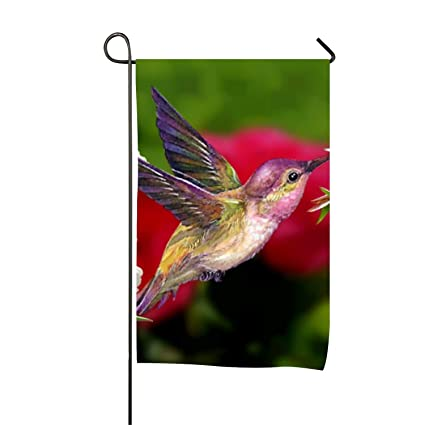 Amazon com : Pink Roses Hummingbird Double-Sided Printed