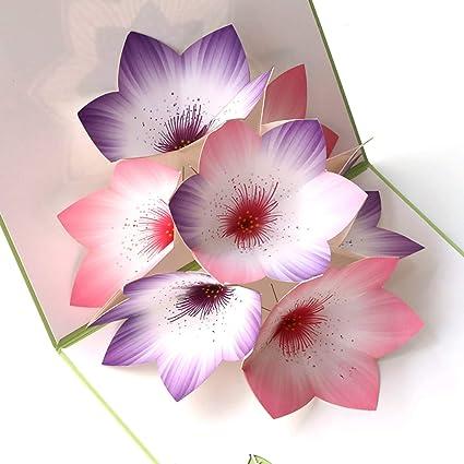 Paper Spiritz Flowers Pop Up Card Birthday Thank You For Women Men Kids