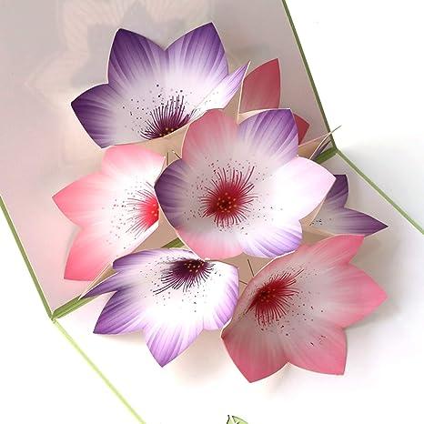 Amazon.com: Paper Spiritz Pop Up Cards Gardenias 3D Happy ...