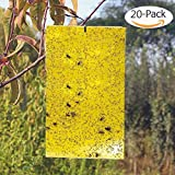 BestTrap 20-Pack Dual-Sided Yellow Sticky Traps for Flying Plant Insect Such as Fungus Gnats, Whiteflies, Aphids, Leafminers,etc- (6x8 Inches, Twist Ties Included)