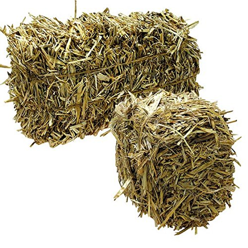 Green Vista Barley Straw Farm Pond Algae Treatment - 12 Pound Case - Treats 1/4 Acre Farm or Retention Pond for 6 Months! - 100 Percent Natural and Safe for All Fish and (Farm Pond)
