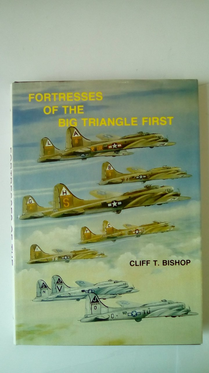 Fortresses of the Big Triangle First: History of the Aircraft