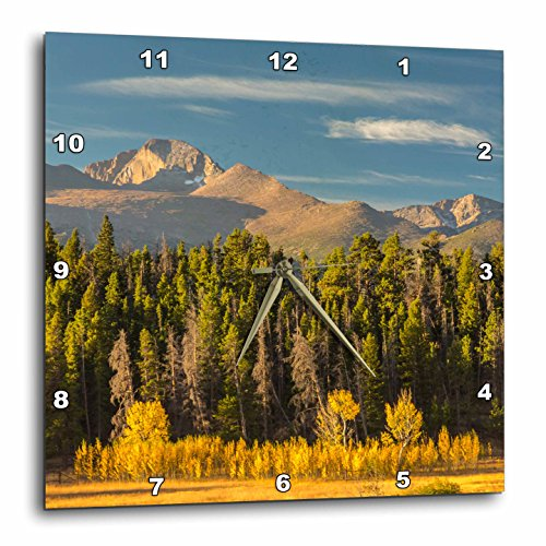 Colorado Rockies Clock - 3dRose Danita Delimont - Forests - USA, Colorado, Rocky Mountain NP. Mountain and forest landscape. - 15x15 Wall Clock (dpp_278741_3)